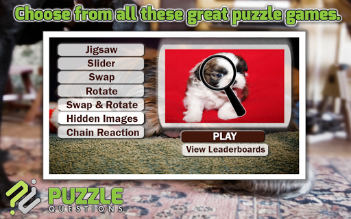 Shih Tzu Puzzle Games