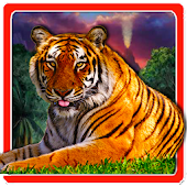 Forest Tiger Waterfall LWP