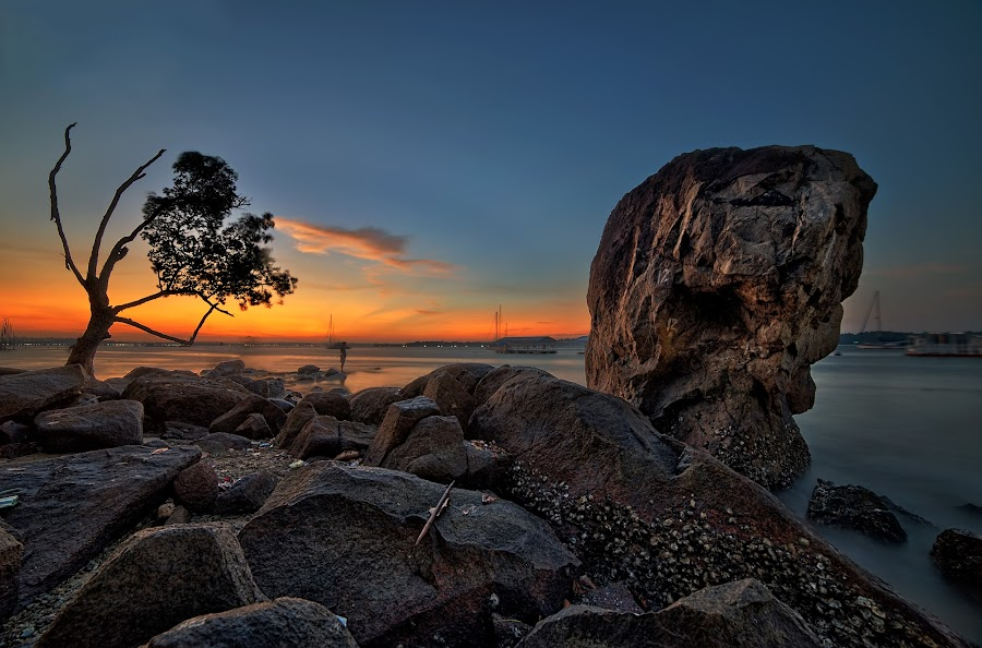 Standing Together Always  by Kafoor Sammil - Nature Up Close Rock & Stone ( changi, singapore )