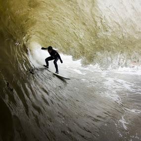 Sammy inside by Dave Nilsen - Sports & Fitness Surfing