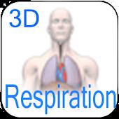 3D Respiration