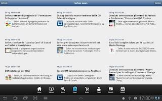 Screenshot of DM Sales&Catalogue