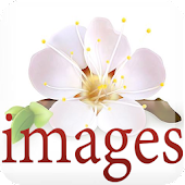 Images variety 2015
