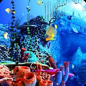 Ship Aquarium Fish LiveWP