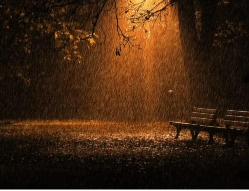 Rainy Night Paid