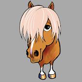 Trygg Häst - Köp