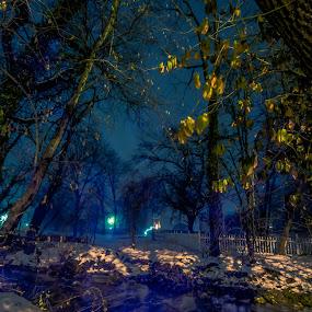 Frozen fog 0079 by Fran Kat - Landscapes Weather ( moods, colors, landscape, frozen, nightscape, lights, light painting, cold, lighting, fog, snow, lightpainting, long exposure, mood lighting, night shot,  )