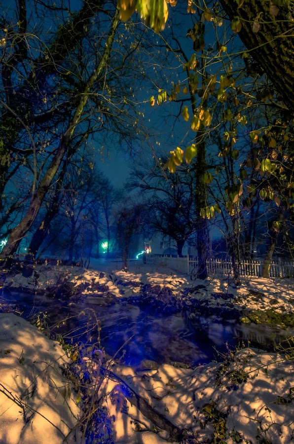 Frozen fog 0079 by Fran Kat - Landscapes Weather ( moods, colors, landscape, frozen, nightscape, lights, light painting, cold, lighting, fog, snow, lightpainting, long exposure, mood lighting, night shot,  )