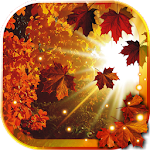 Autumn Sun HD live wallpaper