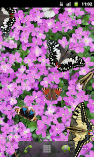 Butterfly Live Wallpaper Free - screenshot thumbnail