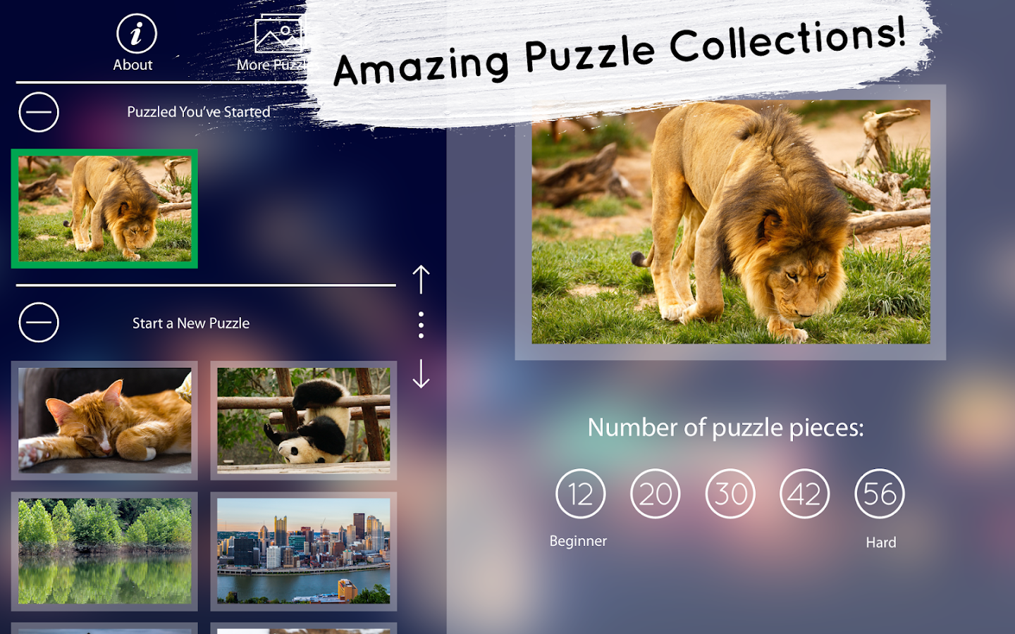 Venn Free: Circle Jigsaw- screenshot