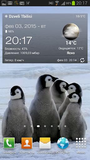 Arctic Penguins Live Wallpaper