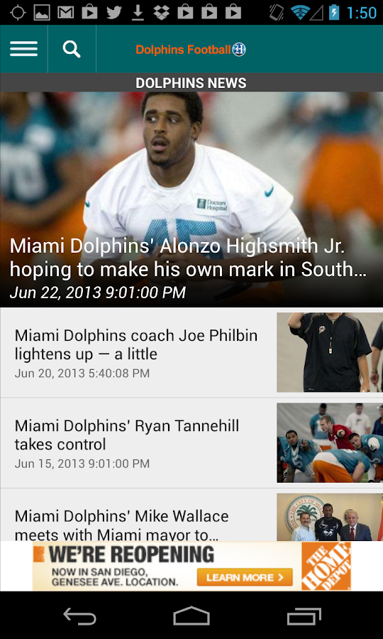 Dolphins Football - screenshot