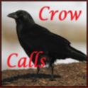 Crow Calls icon