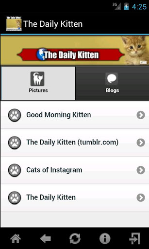 The Daily Kitten