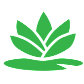 Lilypad Scale