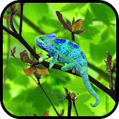 Chameleon Colors Touch