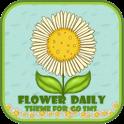 GO SMS Theme T-FlowerDaily icon