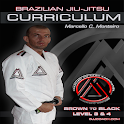BJJ BROWN-BLACK L3&4 Jiu Jitsu icon
