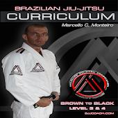 BJJ BROWN-BLACK L3&4 Jiu Jitsu