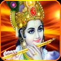 Bhagawad Gita Hindi Full icon