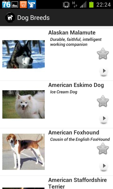 Dogs Breeds FREE - screenshot