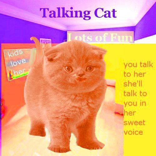 会说话的猫