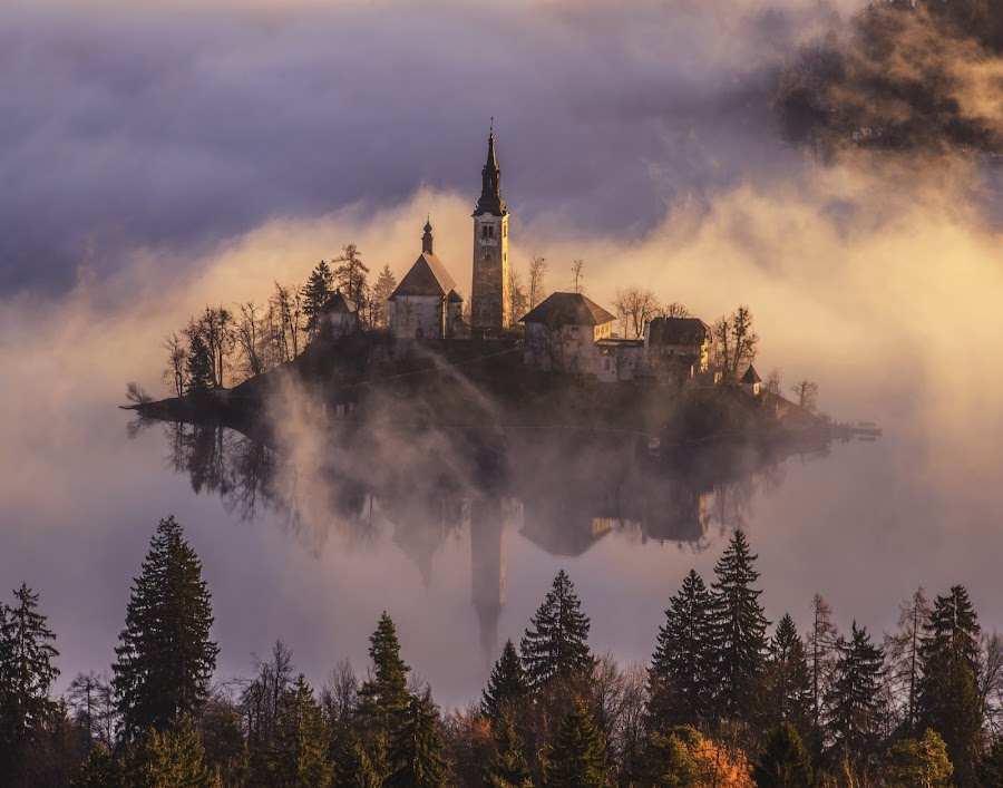 Church on the Island in Mist Sunrise by Aleš Krivec - Buildings & Architecture Places of Worship ( water, church, beautiful, white, lake, reflecting, island, foggy, mountains, winter, tree, window, slovenia, bled, castle, misty, religious, mist, relax, tranquil, relaxing, tranquility,  )