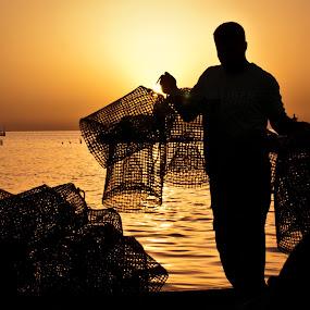 Octopus fisherman by Boutheina Ferid - People Portraits of Men ( kerkennah, silhouette, sea, sunrise, fisherman, octopus, boat )
