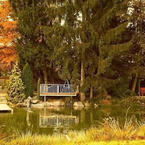 City Park with Small Bridges  by Nat Bolfan-Stosic - City,  Street & Park  City Parks ( park, autumn, lake, bridges, city, fall, color, colorful, nature )