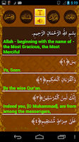 Screenshot of Surah Yaseen - Nice Recitation