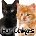 Fur Cakes - Kittens icon