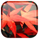 Autumn Live Wallpaper v1.0.4