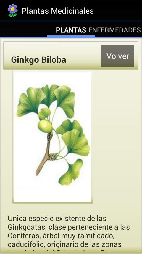 Plantas Medicinales - screenshot