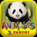Animales Panini