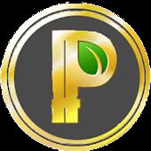 Peer coin