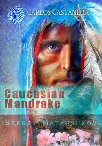 Кавказская Мандрагора*