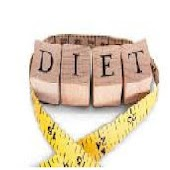 The Diet Book