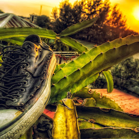 RUGGED SUNSET KICKS by Chase Alog - Artistic Objects Still Life