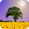 Spring Scene Live Wallpaper icon