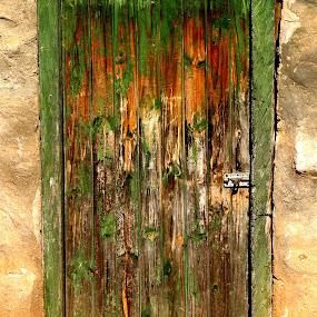 The green door by Hush Naidoo - Buildings & Architecture Decaying & Abandoned ( doorway, green, timeless, door, enter,  )