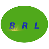 BRL Currency