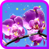 Orchid Spring live wallpaper