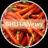 BHUTANews: News from Bhutan