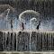 splashing time.jpg