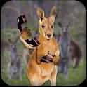 Kangaroo Phone Call icon