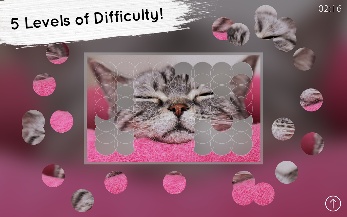 Venn Cats: Circle Jigsaw- screenshot