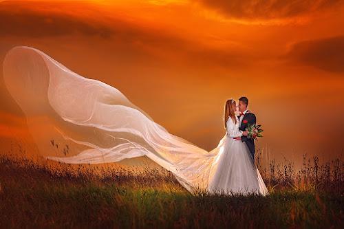 wedding by Dejan Nikolic Fotograf Krusevac - Wedding Bride & Groom ( aleksandrovac, kraljevo, vencanje, fotografia, pozarevac, svilajnac, subotica, snasa, krusevac, svadba, kragujevac, vrnjacka banja, fotograf,  )