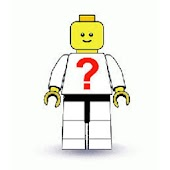 Identifier of LEGO® MiniFigure