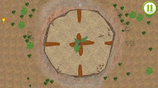 Funny Bird Circle